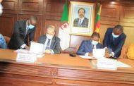 Transport aérien : signature d'un accord entre le Cameroun et l'Algérie.
